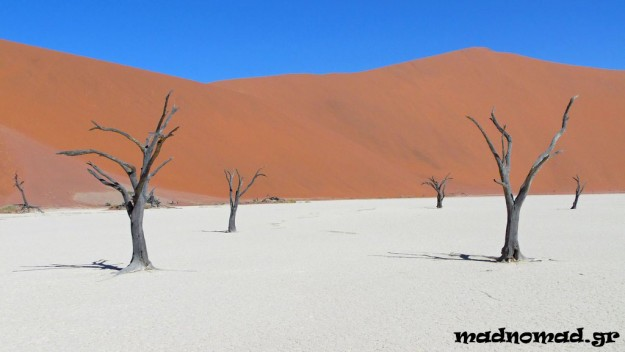 I really wanted to visit Deadvlei! It's a dry marsh where the burnt camel thorn trees remain for 900 years. Their trunks do not decompose due to the excessive aridity!