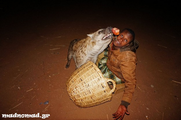 Due to a weird tradition in Harar, people feed wild hyenas from mouth to mouth! I tried that too ;-)